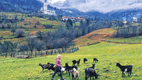 Alle Highlights der kulinarischen Slow Food Reise nach Slowenien
